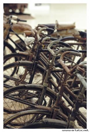 Mining bicycles
