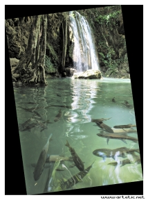 Beautiful erawan waterfalls in Thailand