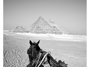 Beautiful view over the pyramids in Cairo