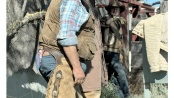 French cowboy in Camargue during cattle work