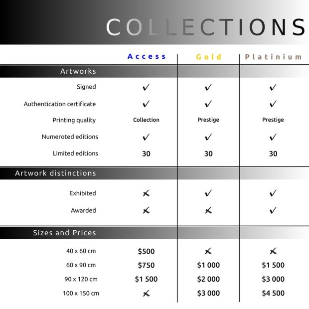 Guilhem Ribart's artworks official price list
