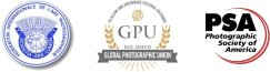 The 3 greatest photographic organizations in the world