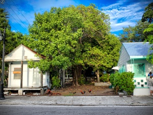 One day in Key West, the southermost point of the US