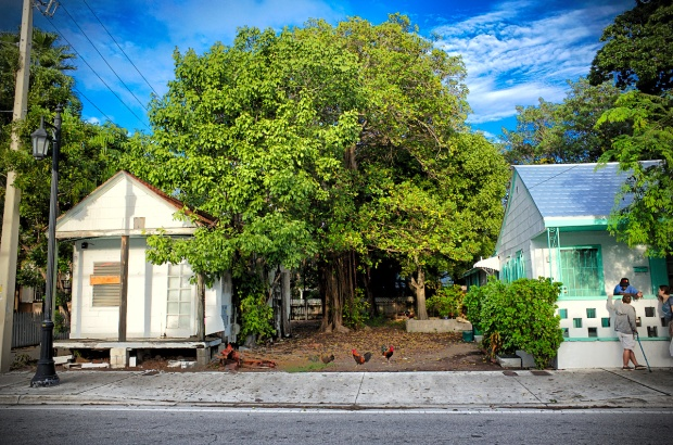 One day in Key West, the southernmost point of the US