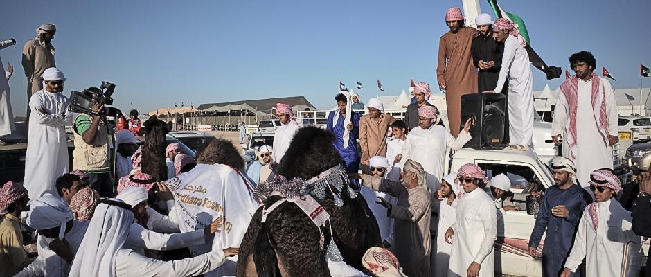 1 week travel in Liwa, Abu dhabi UAE